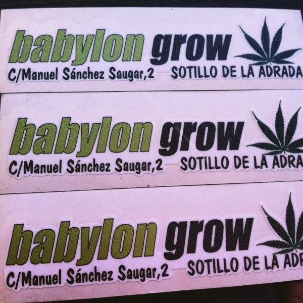 Babylon Grow Sotillo