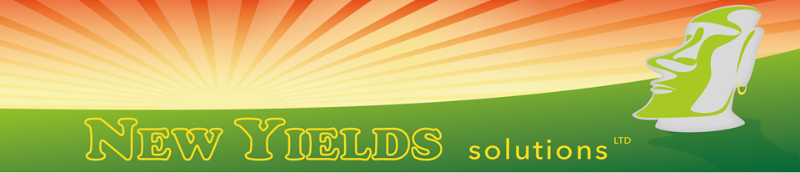 New Yields Solutions LTD