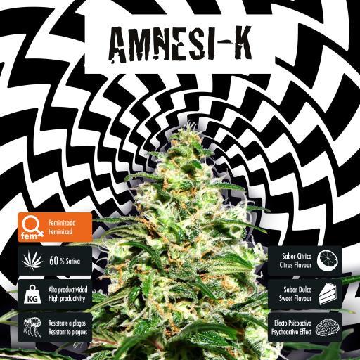 facebook-variedad-amnesi-k