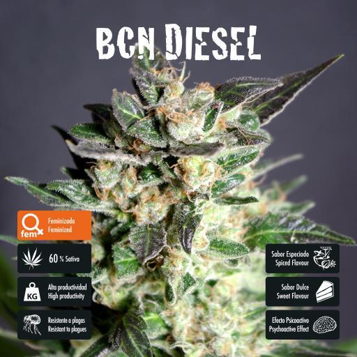 facebook-variedad-bcn-diesel