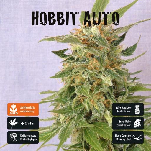 facebook-variedad-hobbit-auto
