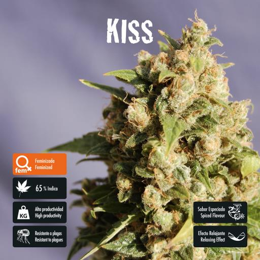 facebook-variedad-kiss