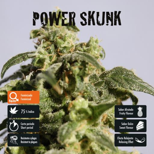 facebook-variedad-power-skunk