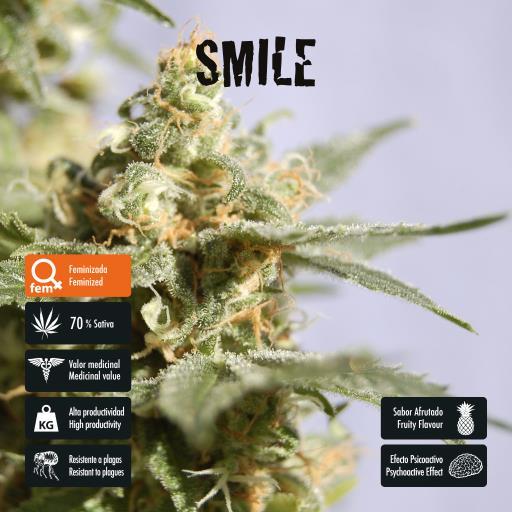 facebook-variedad-smile