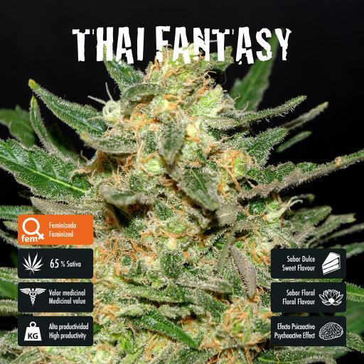 facebook-variedad-thai-fantasy