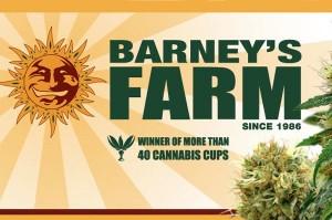 Barneys Farm Shop