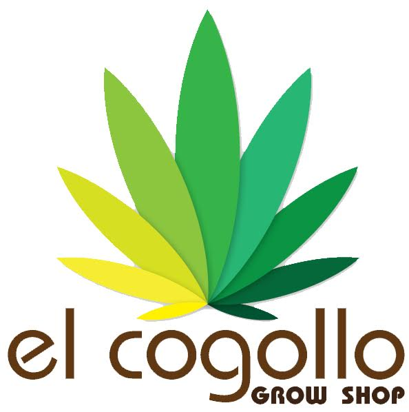 Cogollo Growshop L´Olleria