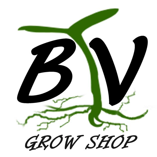 Grow barato Brotes Verdes