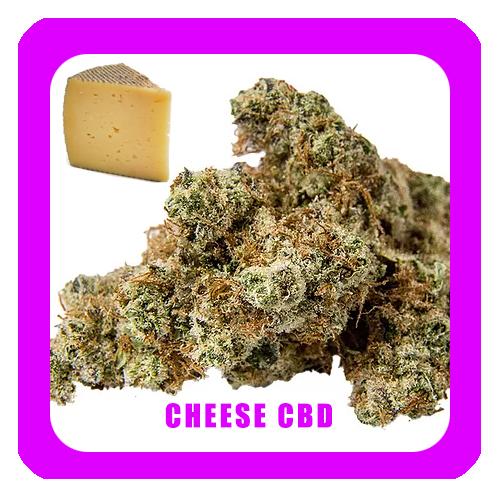 Cheese-CBD-1