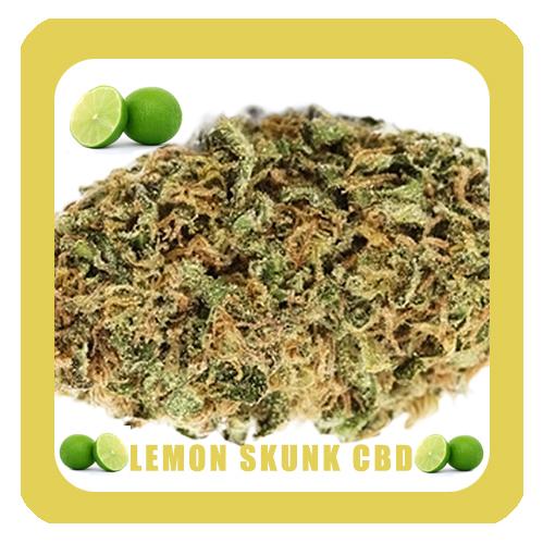 Lemon-Skunk-CBD-NOM9-1