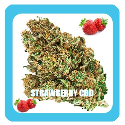 Strawberry-CBD-smellt-1