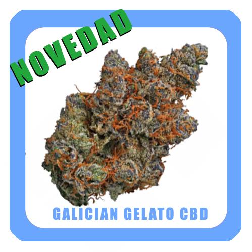novedad-galician-gelato-CBD-1